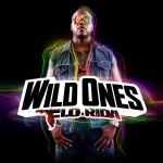 Flo Rida - Wild Ones (2012)