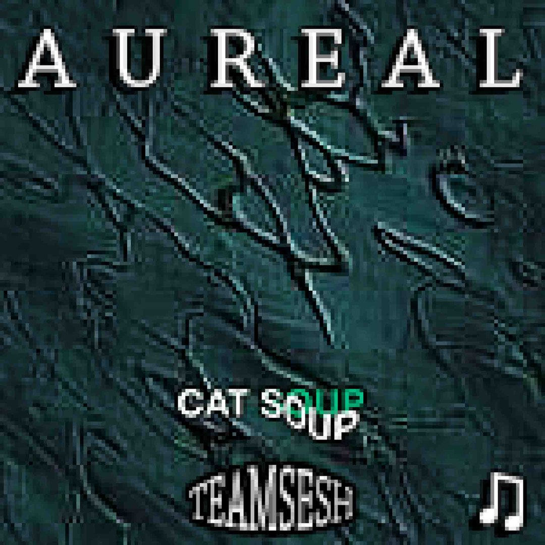 cat soup – aureal