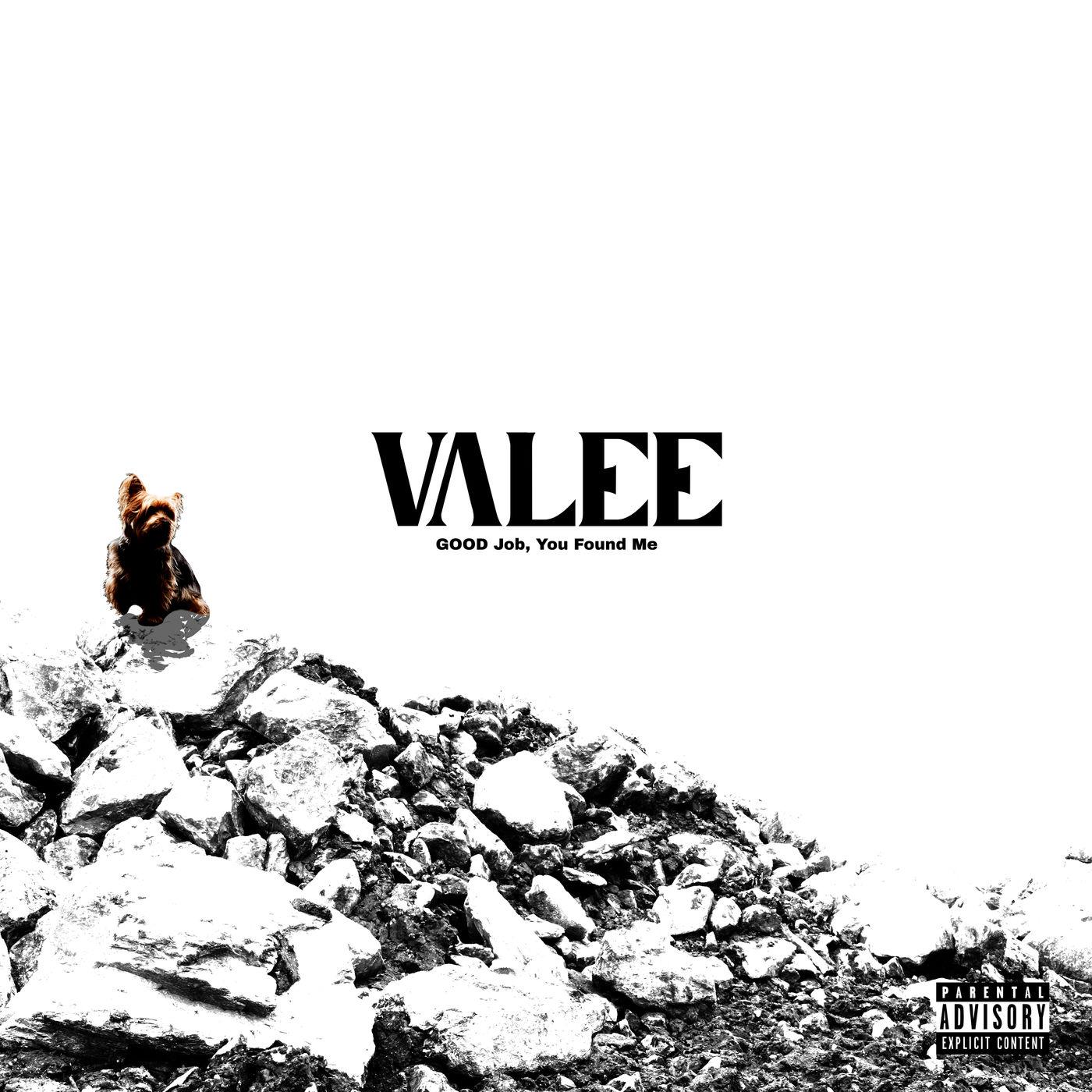 Valee – GOOD Job, You Found Me