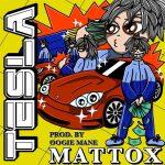 Matt OX – Tesla