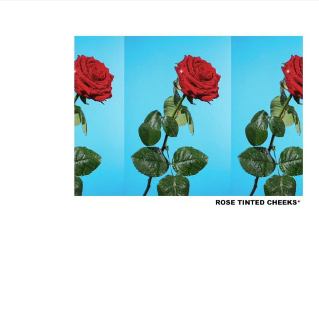 Tyler, the Creator – Rose Tinted Cheeks