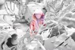 Boulevard Depo & Big Baby Tape – Люди дрессируют людей