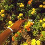 Tyler, the Creator – Peach Fuzz
