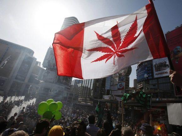 В Канаде открыли вакансию курильщика марихуаны
