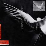 FLESH – Крылья